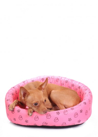 Салатовый лежак для кошек и собак DUCKS