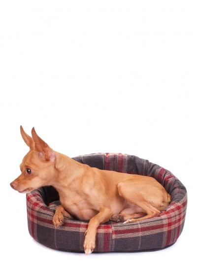 Лежак для кошек и собак PLAID